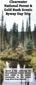 National_Forest_Day_Trip-121x300